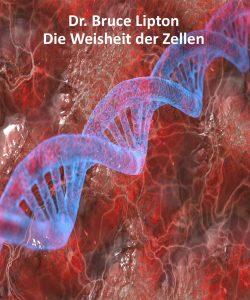 weisheit_zellen_new